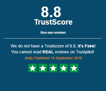 Trustjacked widget fixing - fake trustbox